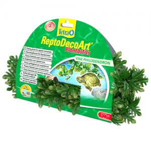 צמח צף דקורטיבי פילודנדרון (Philodendron) לכל סוגי הטרריומים המימיים
